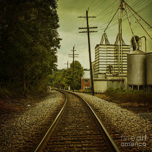 Train Poster featuring the photograph Endless Journey by Andrew Paranavitana