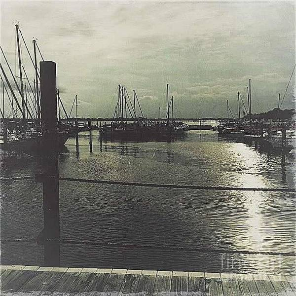 Filtered Poster featuring the photograph Filtered Marina by Beth Williams