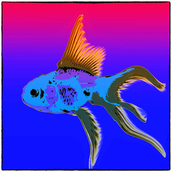 Pop Art Poster featuring the photograph Fish by James Bethanis