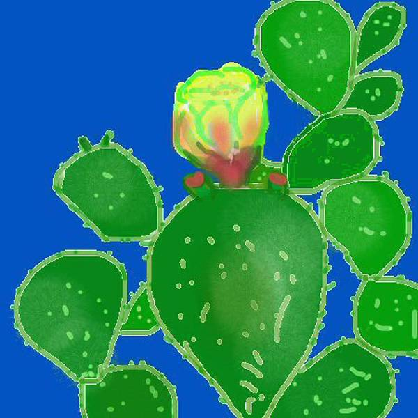 Cactus Poster featuring the digital art Flap Jack Cactus by Carole Boyd