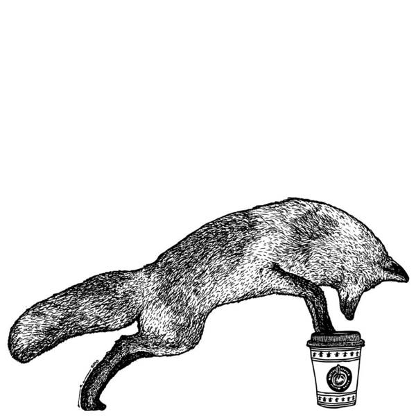 Drawing Poster featuring the drawing Fox Drinking Coffee by Karl Addison