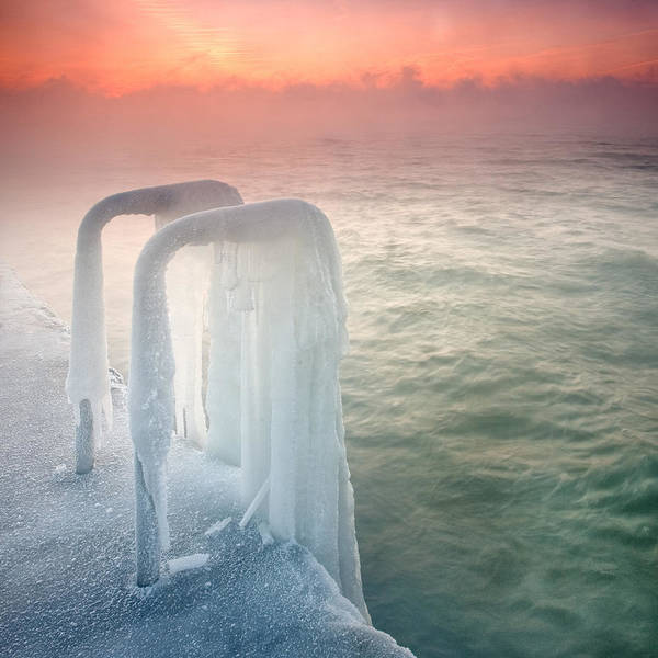 Dawn Poster featuring the photograph Frozen by Evgeni Dinev