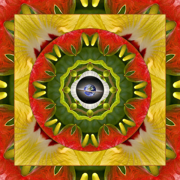 Mandalas Poster featuring the photograph Garden Aglow by Bell And Todd