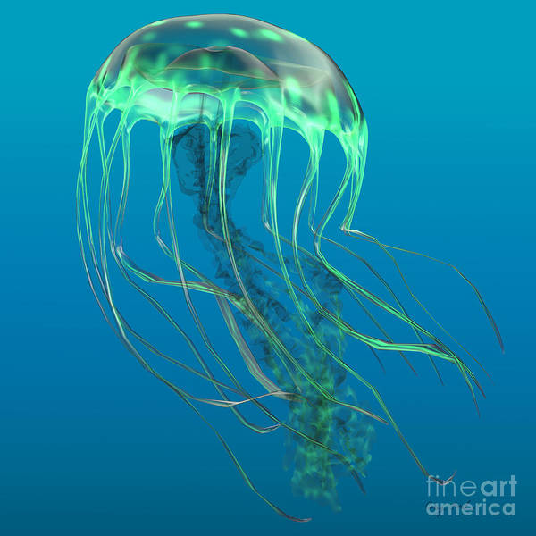 Jellyfish Poster featuring the painting Glow Green Jellyfish by Corey Ford