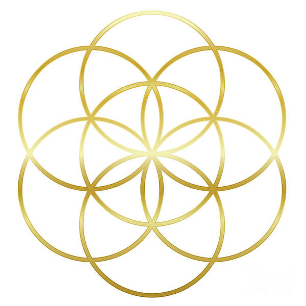Golden Seed Of Life Flower Of Life Poster