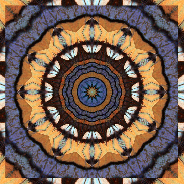 Yoga Art Poster featuring the photograph Healing Mandala 16 by Bell And Todd