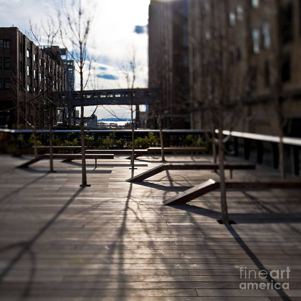 Architectural Detail Poster featuring the photograph High Line Park by Eddy Joaquim