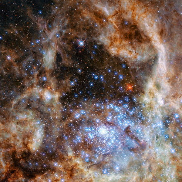 Hubble Poster featuring the photograph Hubble Finds Massive Stars by Nasa - Esa