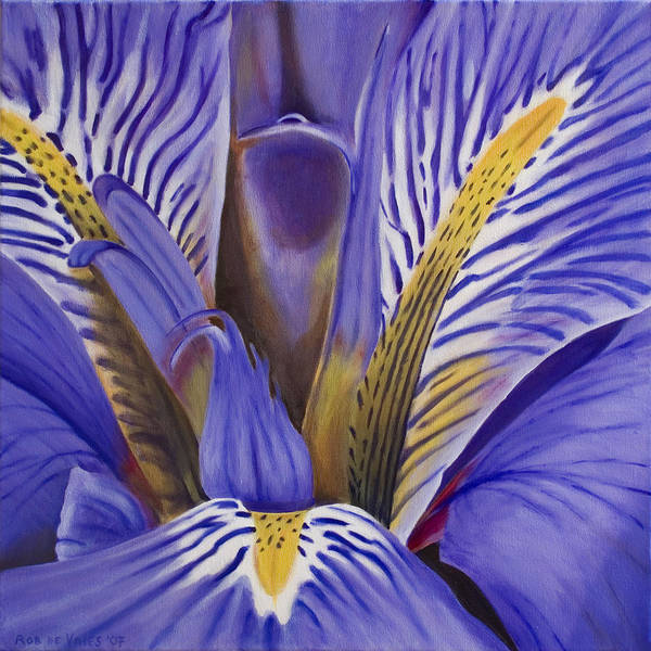 Flower Poster featuring the painting Iris by Rob De Vries
