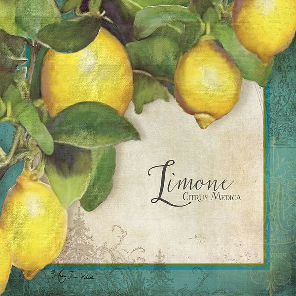 Lemons Poster featuring the painting Lemon Tree - Limone Citrus Medica by Audrey Jeanne Roberts
