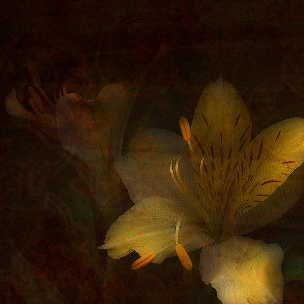 Mixed Media Poster featuring the photograph Lilies II by Bonnie Bruno