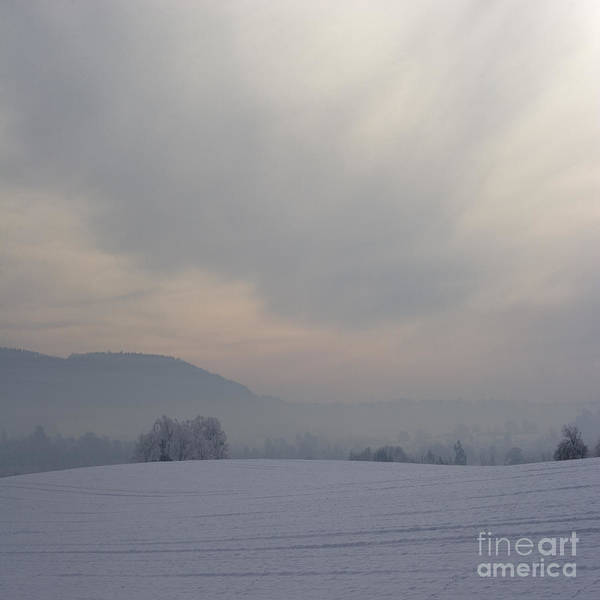 Winter Poster featuring the photograph Misty Frosty Day by Angel Ciesniarska