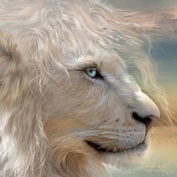 Lion Poster featuring the mixed media Nature's King Portrait by Carol Cavalaris