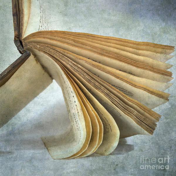 Texture Poster featuring the photograph Old Book by Bernard Jaubert