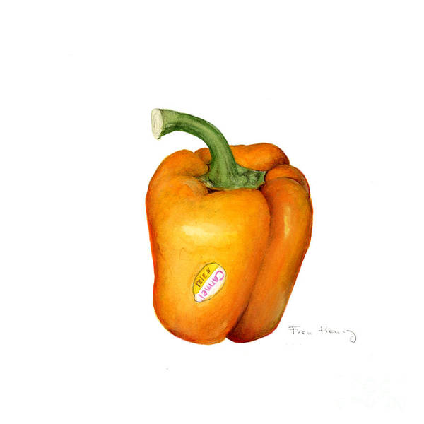 Botanical Poster featuring the painting Orange Pepper by Fran Henig