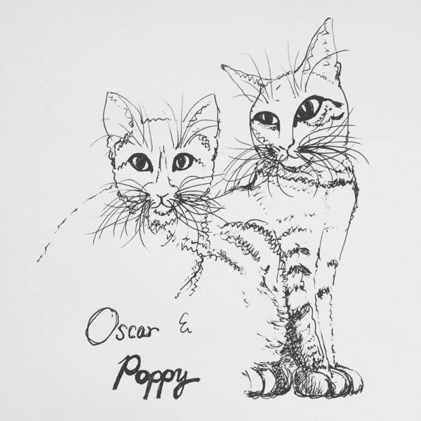 Cat Poster featuring the drawing Oscar And Poppy by Pookie Pet Portraits