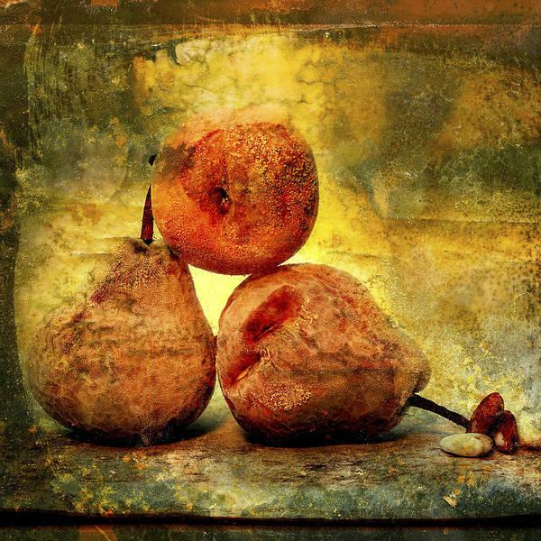 Aging Process Poster featuring the photograph Pears by Bernard Jaubert
