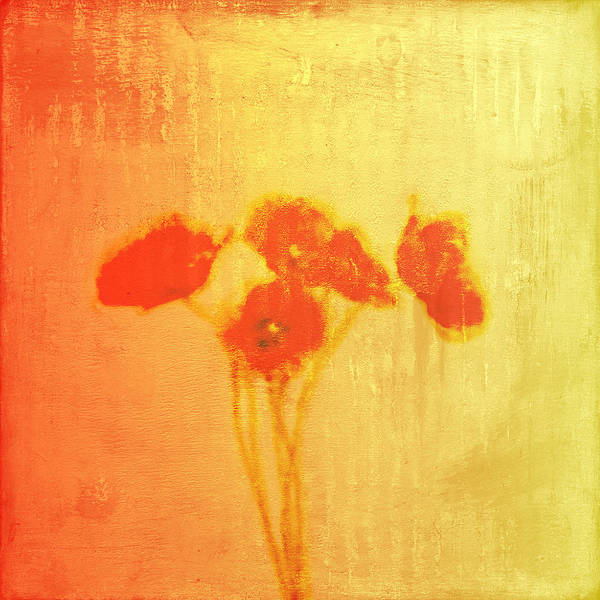 Poppies Poster featuring the painting Poppies by Jude Reid