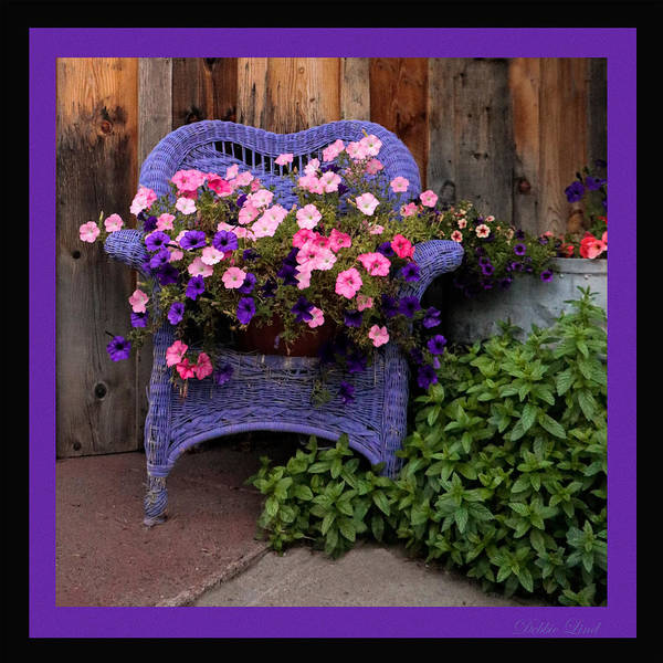 Flowers Poster featuring the photograph Purple Chair by Debbie Lind