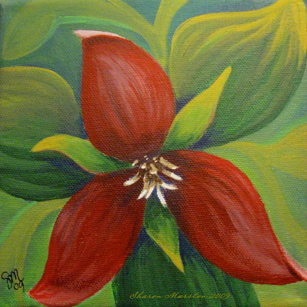 Purple Trillium Poster featuring the painting Purple Trillium by Sharon Marcella Marston