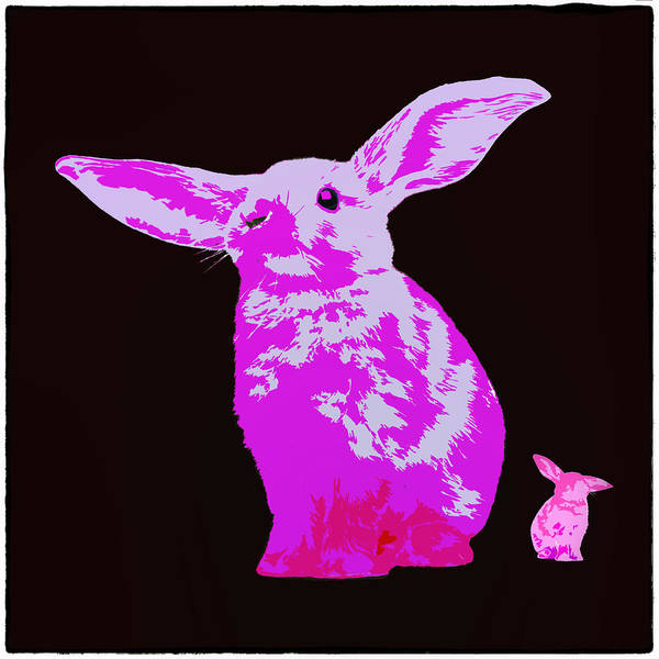 Rabbit Poster featuring the photograph Rabbit by James Bethanis
