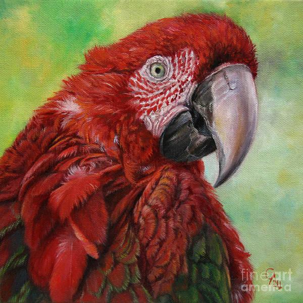 Nature Poster featuring the painting Red Ara Chloropterus Macaw by Svetlana Ledneva-Schukina
