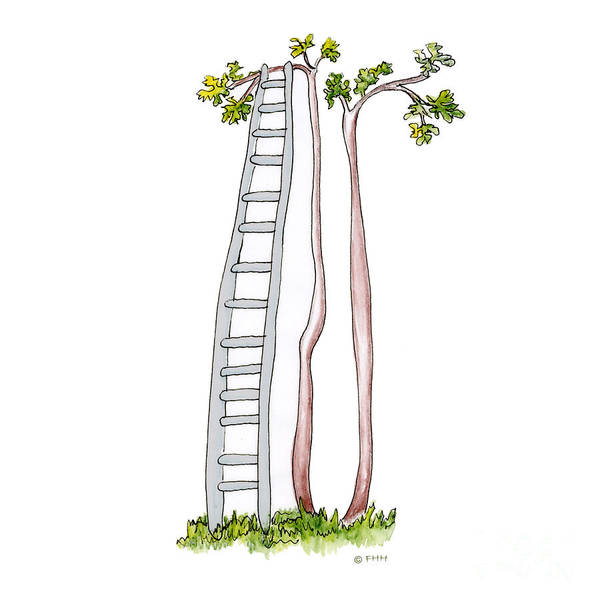 Illustration Poster featuring the drawing Rickety Ladder by Fran Henig