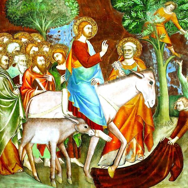 Jesus Poster featuring the photograph Rides Into Jerusalem by Munir Alawi
