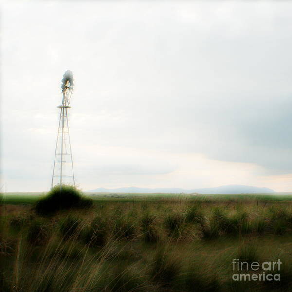 Dream Poster featuring the photograph Rural Daydream by Idaho Scenic Images Linda Lantzy