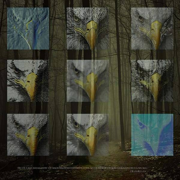 Forest Poster featuring the digital art Save The Forests by Tammera Malicki-Wong