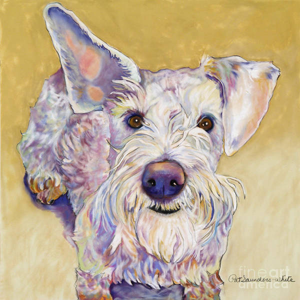 Schnauzer Poster featuring the pastel Scooter by Pat Saunders-White