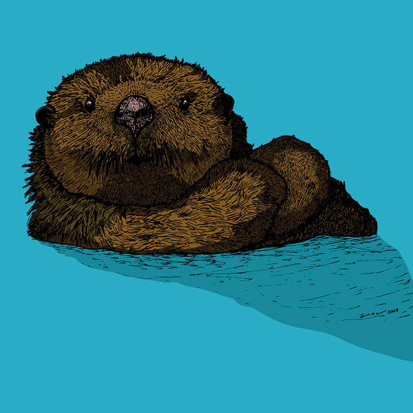 Drawing Poster featuring the drawing Sea Otter - Full Color by Karl Addison