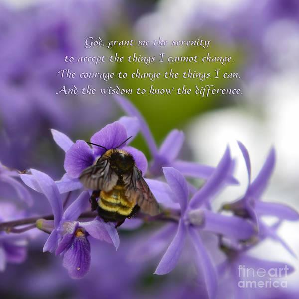 Serenity Prayer Poster featuring the photograph Serenity Prayer by Olga Hamilton
