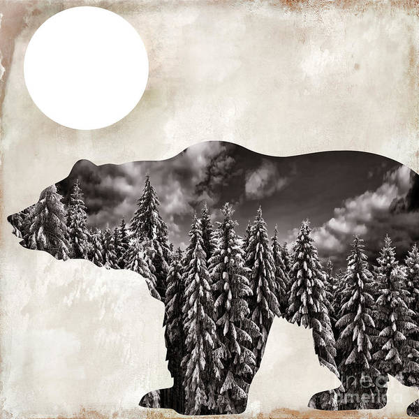 Bear Poster featuring the painting Something Wild Bear by Mindy Sommers