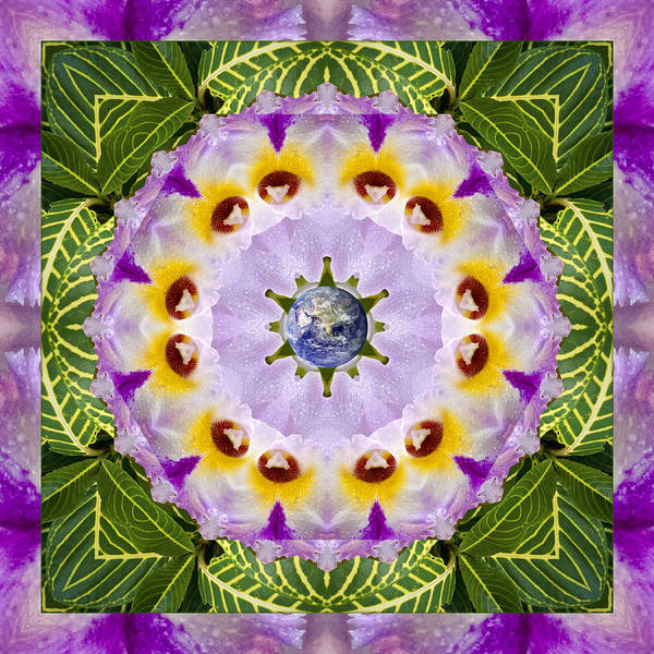 Mandalas Poster featuring the photograph Sun Shower by Bell And Todd