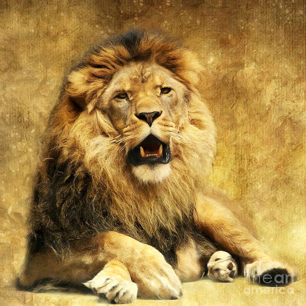 Lion Poster featuring the digital art The King by Angela Doelling AD DESIGN Photo and PhotoArt