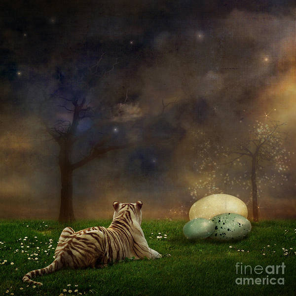 Tiger Poster featuring the photograph The Magical Of Life by Martine Roch