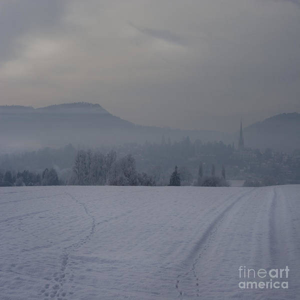 Winter Poster featuring the photograph The Misty Wintery Afternoon by Angel Tarantella