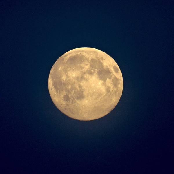 Lehtokukka Poster featuring the photograph The Moon 1 by Jouko Lehto