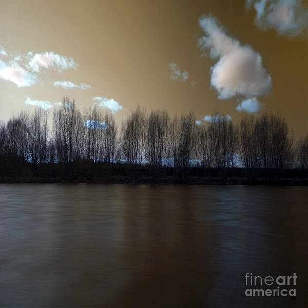 River Poster featuring the photograph The River Of Dreams by Angel Ciesniarska
