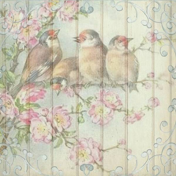 Vintage Shabby Chic Floral Faded Birds Design Poster