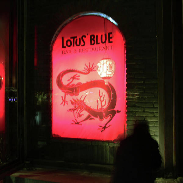 Late Night Bar Poster featuring the photograph Visitor Of Lotus Blue by Twenty Forever