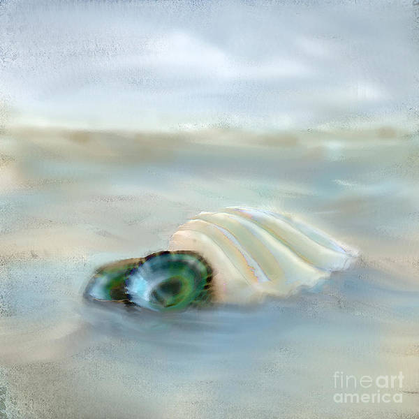 Sea Shell Poster featuring the photograph Washing Away by Betty LaRue