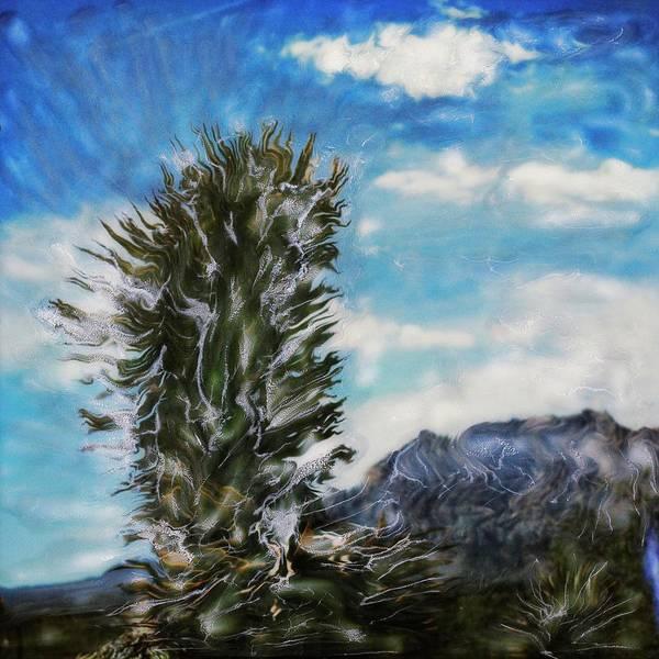Paul Tokarski Poster featuring the photograph Yucca Glow by Paul Tokarski
