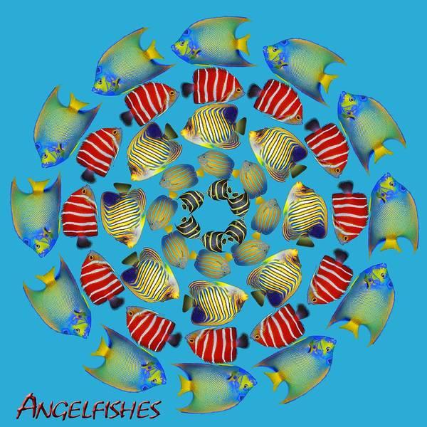 Fish Poster featuring the digital art Zeerkl Of Angelfish by Edelberto Cabrera