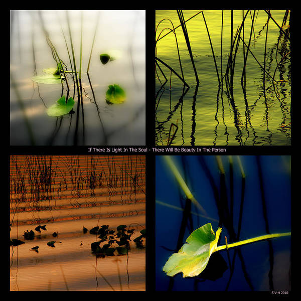 Zen Poster featuring the photograph Zen For You by Susanne Van Hulst