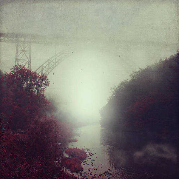 Fog Poster featuring the photograph Bridge And River In Fog by Dirk Wuestenhagen