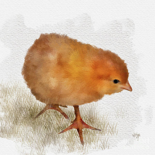 Bird Poster featuring the digital art Peep Peep by Lois Bryan