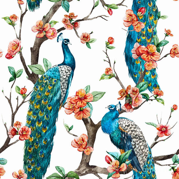 Cherry Poster featuring the digital art Watercolor Pattern Peacock On A Tree by Anastasia Lembrik
