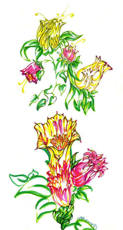 Garden Of Eden Collection Poster featuring the drawing Summer Flowers by Judith Herbert